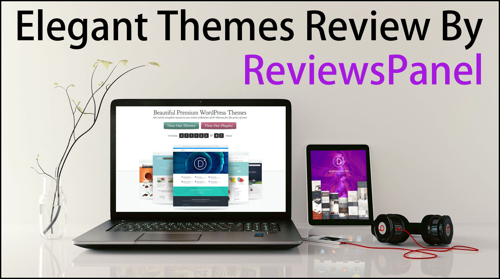Elegant Themes Review: The Beautiful WordPress Themes Store